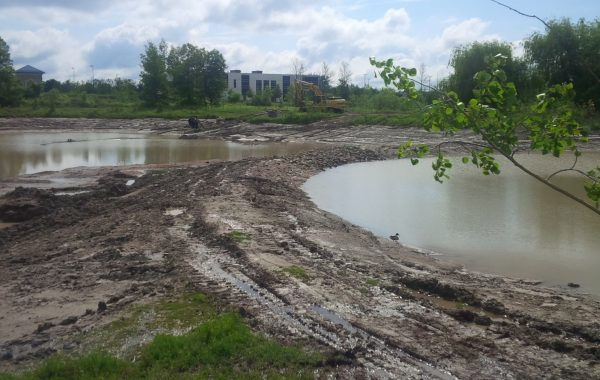 St. Jacob's Storm Water Management Pond Cleanout